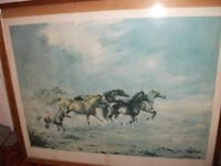 FRAMED PICTURE OF WILD ROAMING HORSES AND FOAL