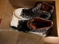 New Female Shoes Converse Chuck II x Missoni