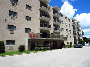 Ideal for London students! Secure bachelor apartment for rent London Ontario image 4