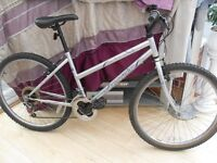 ADULT LADIES SILVER TERRAIN MOUNTAIN BIKE IN GOOD CONDITION