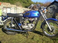 classic triumph tiger 650 1973 a investment that you can ride and enjoy