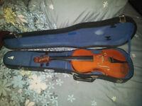 Stentor Student Violine