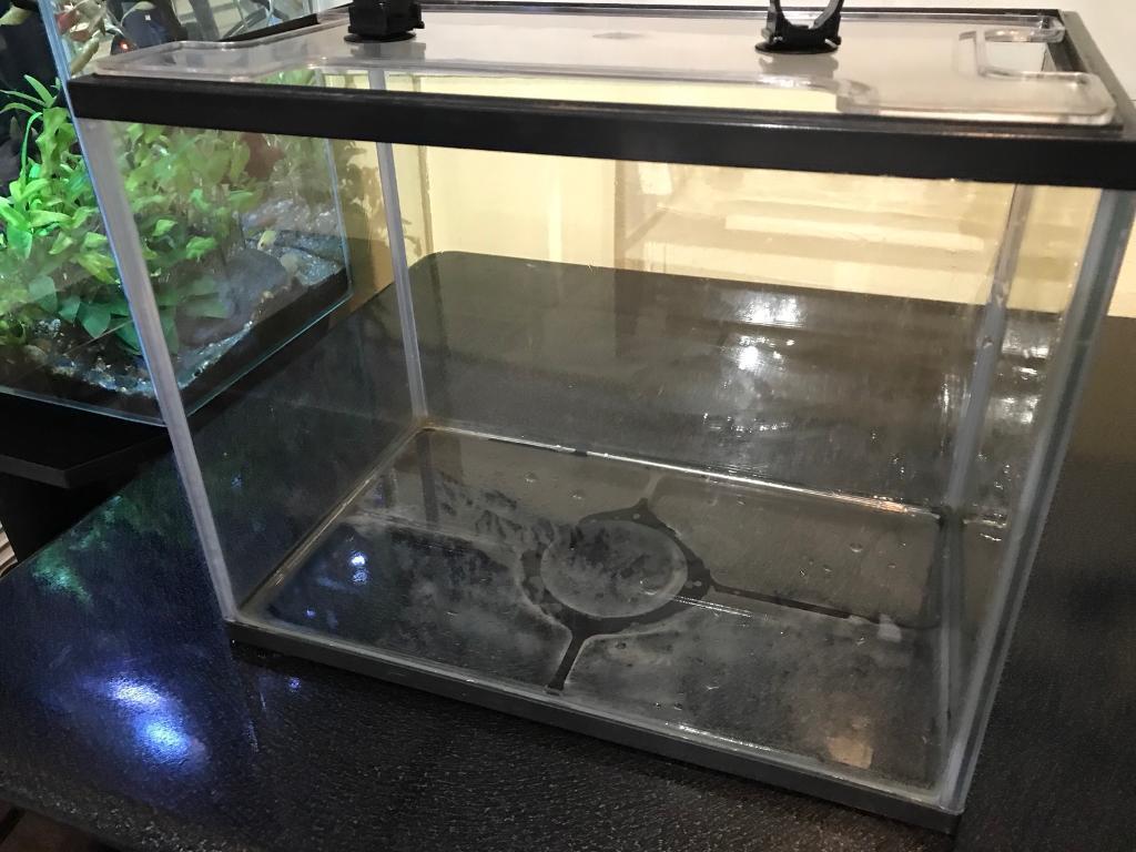 simple but useful aquarium in brighton east sussex gumtree