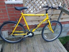 Raleigh Gents Bicycle with mudguard in new condition