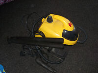 Steam cleaner, electric with large brush head.