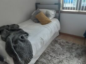 Layezee Single bed with trundle and headboard