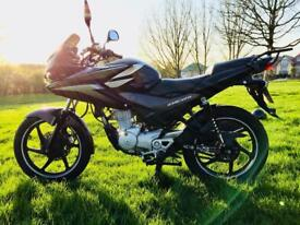 Honda Cbf 125 Cbf125 CBT Learner legal 2011 MOT Black Very low mileage 7k miles delivery available