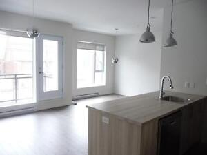 Newly built 2 bedroom condo for sale-Verdun