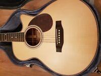 Freshman guitar FA250GAC electro acoustic, and hard case