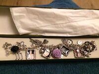 Evanescence Charm bracelet