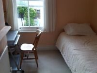 Cosy room available over summer to international/mature student in lovely family house in Fiveways