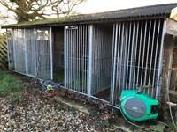4 Outdoor Dog Kennels