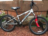 Boys Shogun Mountain Bike 20 inch Wheels Suit Age 7 8 9 10