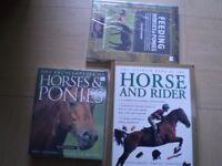 NEW Dog books, Horse books, Dog Plates, Dog Top