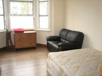 SUPERB NEWLY RENOVATED 3 BEDROOM GARDEN FLAT NEAR TRAIN, ZONE 2 NIGHT TUBE, 24 HR BUSES & SHOPS