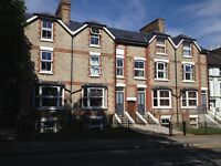 Single room available in shared house. Dbl Glazed, w/machine, car park, council tax & bills inc