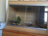 2ft beech vivarium for sale