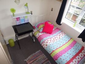Lovely cosy single room all bills included