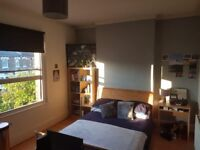 1 MONTH - £625/month Large Double room near Turnpike Lane for short term rent (August)