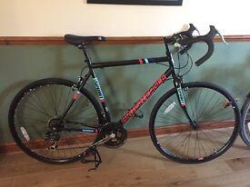 British Eagle Sprint Road Bike and ELITE Supercrono Mag E-Force Elastogel Turbo Trainer