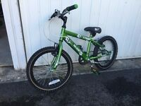 Raleigh Striker childs mountain bike