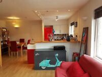 Modern and stylish one bedroom flat available from mid September in very sought location