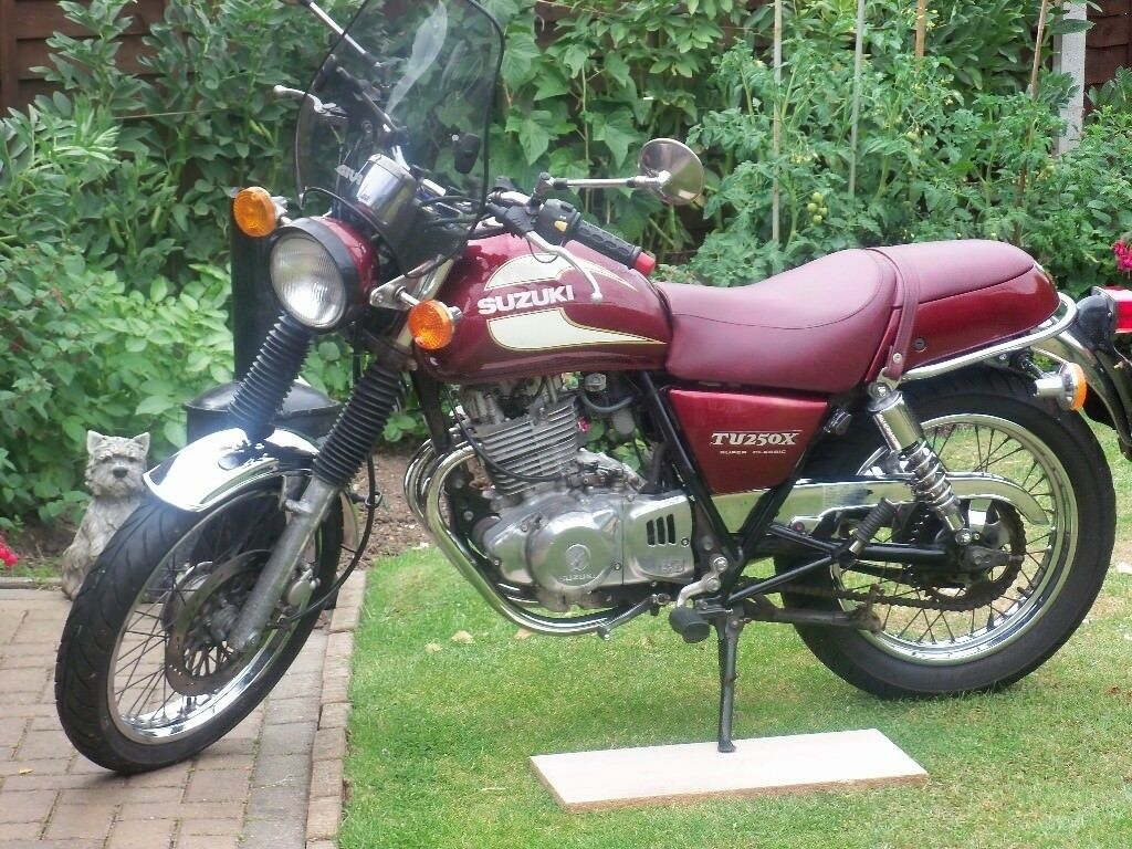 Susuki 250 X Volty In Stockton On Tees County Durham Gumtree
