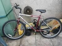 5 Speed Bike
