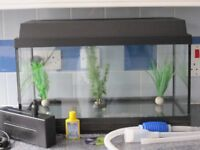 Fish Tank with Pump, Ornaments, Lighting, 30 lt square glass