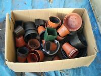 Large Quantity of Plant Pots