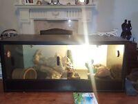"""3ft Reptile Vivarium/Tank 36"""" Including UV Light Starter and Heat Lamp Fittings"""