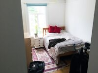Large Double Bedroom Available (Brading Road)