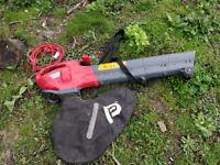 electric leaf vacuum / blower