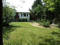 Country Living In The City - Goulds
