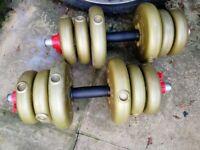 Vinyl weights dumbbells 20 kg