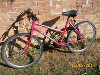 "Ladies Girls Raleigh Manta Mountain Bike 26"" wheels 18.5"" Frame - ATT23"