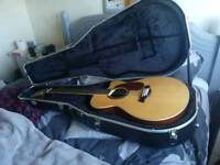 Semi acoustic 12 string guitar NEW WITH CASE