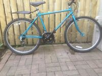 RALEIGH ECLIPSE MOUNTAIN BIKE FOR SALE, BARGAIN PRICE.