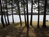 Beautiful Trailer and Camp Sites on Lake Kashwakamak