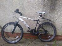 Cross Tonus used mountain bike