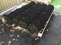 Premium Lawn Turf - brand new (8 rolls)
