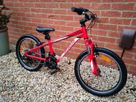 """Children's 20"""" Specialized Hotrock Mountain bike."""