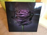 Purple Rose Print