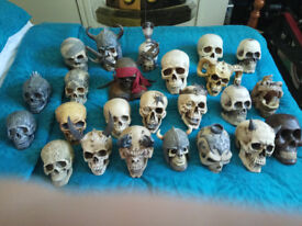 Collectable resin life size Skulls