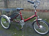 Tri-1 Adult's tricycle, 7 speed, excellent condition