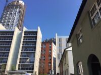 Ensuite in room in canary wharf e14 for professional only