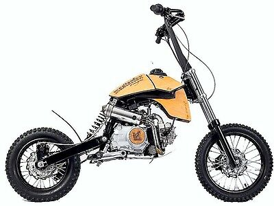 2017 Other Makes MASTERFOX  125cc Stand On Scooter / Pit Bike. Automatic.
