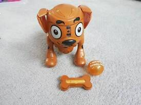 Texsta scooby doo dog