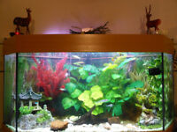 Jewel Aquarium Setup Beautiful Corner Unit Everything Included - Just add Your Choice of Fish