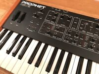 Dave Smith Instruments Prophet Rev2 Analogue Synthesizer